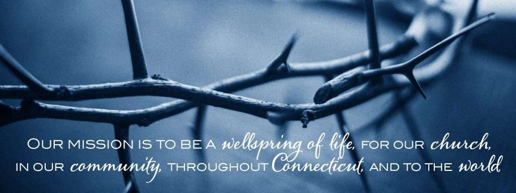 wellspring-mission-statement-11brd-dq2021-crown-of-thorns-main-web-page-web-banner2x-100