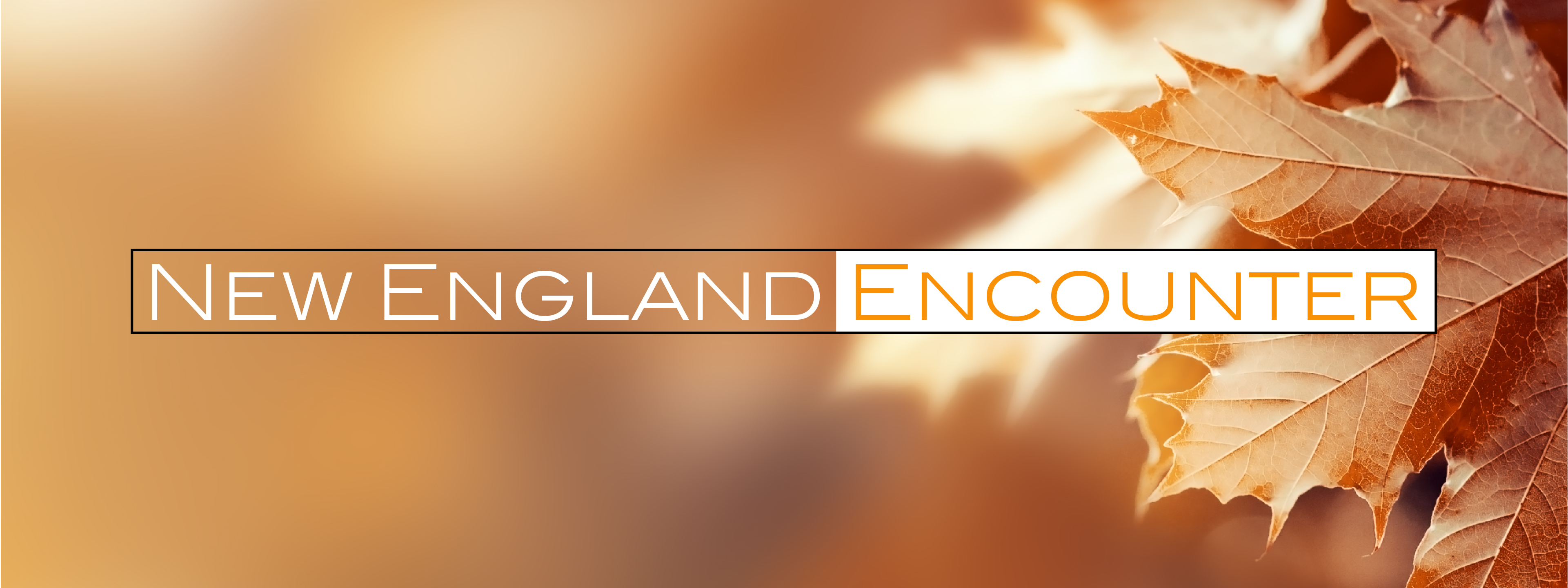 new-england-encounter-5brd-dq2018-web-banner