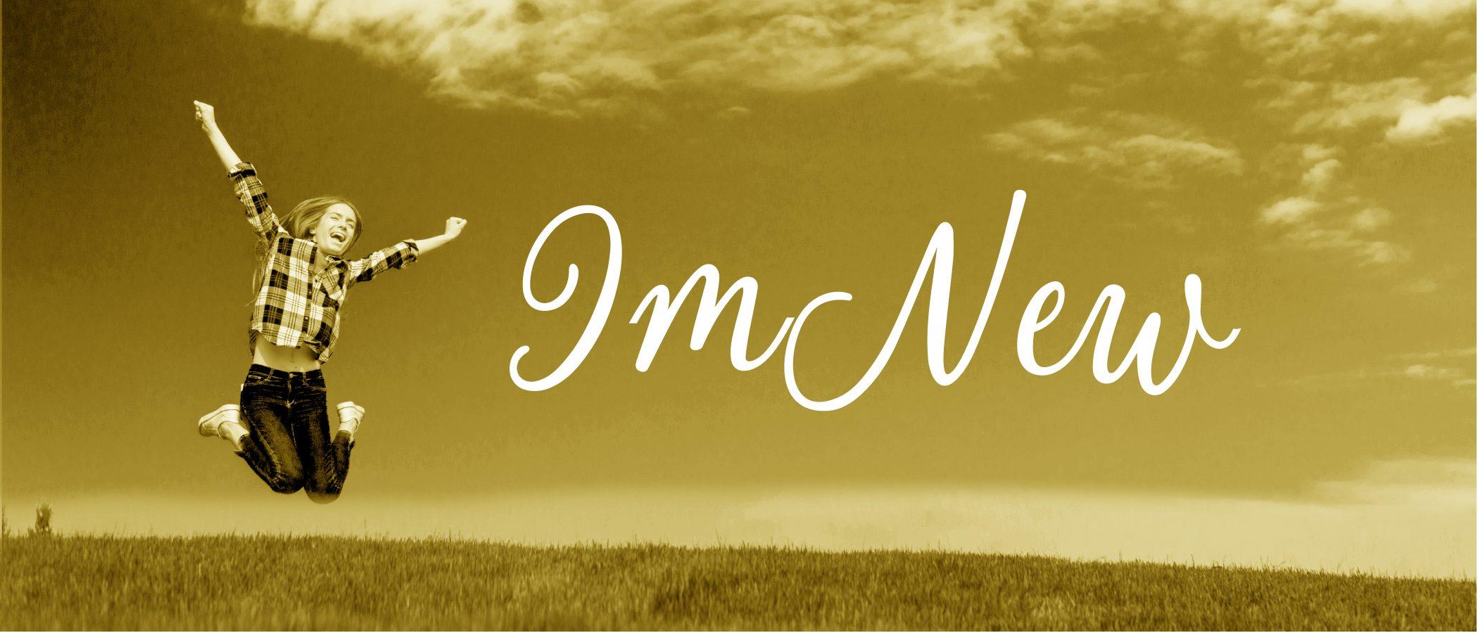 im-new-11brd-dq2021-web-banner2x-100