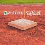wellspring-softball-4brd-dq2019-square